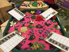 EYFS Maths - Bug counting/ making marks to represent number Eyfs Activities, Counting Activities, Spring Activities, Maths Eyfs, Eyfs Classroom, Numeracy, Mark Making Early Years, Early Years Maths, Continuous Provision Eyfs