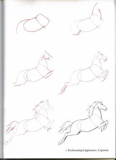 HOW TO DRAW IT: Horse Jump