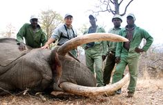 Petition: Stop any kind of Safari hunting in Africa