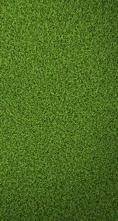 67 Ideas For Grass Wallpaper Iphone Nature Taps Office Wallpaper, Graphic Wallpaper, Green Wallpaper, Mobile Wallpaper, Wallpaper Backgrounds, Nature Wallpaper, Brick Texture, Floor Texture, Tiles Texture