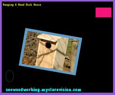 Hanging A Wood Duck House 155616 - Woodworking Plans and Projects!