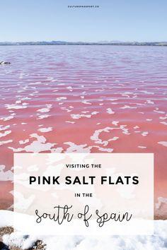 Pink Salt Flat Torrevieja, Southern Spain, Pink Lake, Pink Salt Flat Spain, Travel Spain