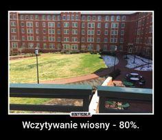 Bezuzyteczna.pl | Codzienna dawka wiedzy bezuzytecznej Wtf Funny, Hilarious, Funny Lyrics, Polish Memes, Funny Mems, Quality Memes, Pranks, Best Memes, Fun Facts