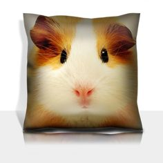 Animals Guinea Pigs Pets so Cute 100% Polyester filled Comfort Square Pillows Customized Made to Order Support Ready Premium Deluxe 17 1/2 Inch X 17 1/2 Inch Graphic Background Covers Designed Color Definition Quality Simplex Knit Fabric Soft Wrinkle Free Couch Accessories Cushions