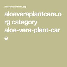 aloeveraplantcare.org category aloe-vera-plant-care