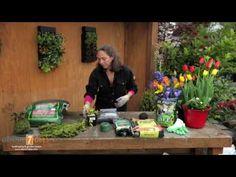 String Garden Tutorial - also known as Kokedama or Moss Balls - YouTube