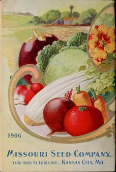 1906 Missouri Seed Company Catalogue