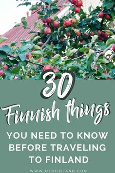 These surprising cultural facts on Finland help you understand the logic of Finnish people and Finnish culture in general! Finland Destinations, Holiday Destinations, Vacation Destinations, Helsinki Things To Do, Finland Facts, Finland Culture, Finnish Language, Lapland Finland, Finland Tour