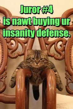 Is not buying your insanity defense.
