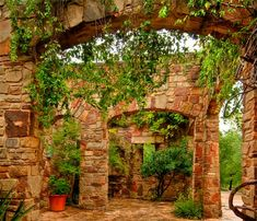 Lady Bird Johnson Wildflower Center - As part of our rainwater harvesting system, the roof, shaped like an open-winged butterfly, is designed to maximize water collection. This water feeds via the Roman-styled aqueduct, to the cistern at the front entrance.