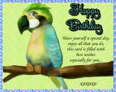 A sweet birthday card suitable for anyone's birthday. Free online Have Yourself A Special Day ecards on Birthday Birthday Hug, Birthday Wishes Funny, Birthday Songs, Very Happy Birthday, Feeling Special, Feeling Happy, Birthday Sparklers, Beautiful Birthday Cards, Happy Panda