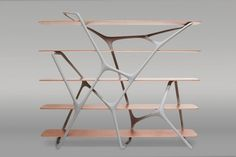 Modern Naturoscopie Shelf by Noé Duchaufour-Lawrance