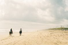 Away We Go: The Outer Banks » Elaine Palladino