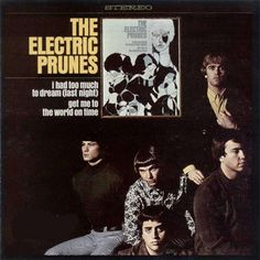 """""""The Electric Prunes"""" (1967, Reprise).  Their first LP.  Contains """"I Had Too Much To Dream (Last Night)."""""""