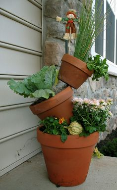 Container garden vegetables. Less feasible for my amount of space, but cute!