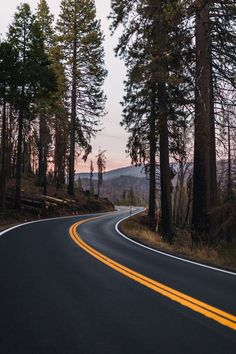 Beautiful Roads, Beautiful Landscapes, Road Photography, Landscape Photography, Forest Road, Winding Road, City Aesthetic, Scenery Wallpaper, Nature Pictures