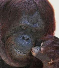 Genuine Love.