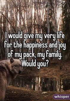 Yes - this is me to a tee because family is an unconditional bond that no one can break if you have strong values. Wolf Pack Quotes, Wolf Qoutes, Lone Wolf Quotes, Strong Quotes, True Quotes, Wolf Spirit Animal, Wolf Love, Wolf Pictures, She Wolf