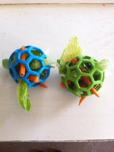 I love this idea, definitely will keep them occupied for a while! - Marion Jungfermann - I love this idea, definitely will keep them occupied for a while! I love this idea, definitely will keep them occupied for a while! Pet Guinea Pigs, Guinea Pig Care, Pet Pigs, Diy Guinea Pig Toys, Guinea Pig Food, Rabbit Toys, Pet Rabbit, Diy Bunny Toys, Pet Bunny Rabbits