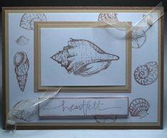very pretty stipple shells
