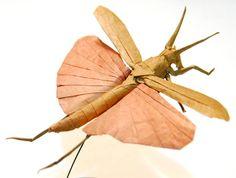 Origami grasshopper.