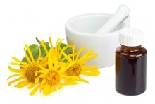 Bach Flower Remedies for Pets