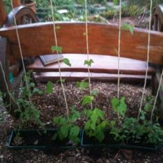 Ideas for a Self-Sufficient Life