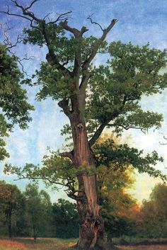 Pioneer of the Forest No. 2, from Pioneers of the Woods, by Albert Bierstadt