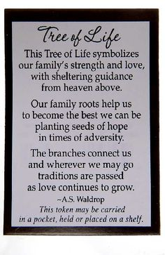 41 Best family tree quotes images | Family tree quotes ...