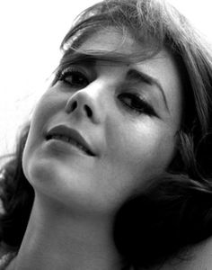 Natalie Wood: American actress in Hollywood from the starred opposite Steve McQueen in her last black-and-white movie, Love With The . Russian American, Splendour In The Grass, Natalie Wood, Daguerreotype, Photo On Wood, American Actress, Movie Stars, Close Up, Portrait Photography