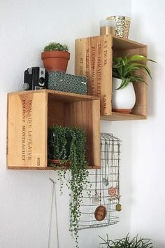 Use wine crates to create DIY shelves for plants or cookbooks. Use wine crates to create DIY shelves for plants or cookbooks. Wooden Wine Boxes, Wood Boxes, Wine Crates, Wine Crate Decor, Wooden Basket, Crate Shelves, Wall Shelving, Wine Box Shelves, Shelving Units