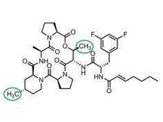 Clever chemistry and a new class of antibiotics - Science360 News Service | National Science Foundation