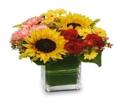 Sunflowers, carnations and roses in a pretty leaf lined cube vase for delivery Monday Morning Flower and Balloon Co ~ MMF051