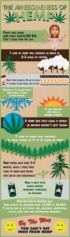 The Benefits Of Hemp - http://www.potterest.com/pin/the-benefits-of-hemp/