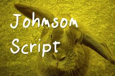This is the FREE Johnson script by Marco Ballare which is a beautiful handwritten font. It has a very smooth feel and is available for personal use.