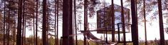wonderful tree hotel, close to where I come from in northern Sweden