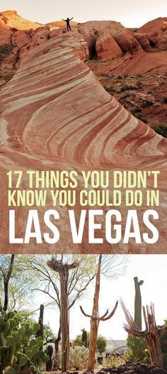 Near University of Nevada - Las Vegas: 17 Things You Didn't Know You Could Do In Las Vegas