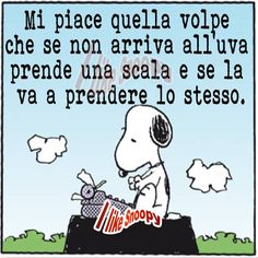 #snoopy #volpe