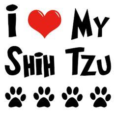 i love my shih tzu