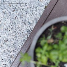 How To Dry Basil, Herbs, Food, Essen, Herb, Meals, Yemek, Eten, Medicinal Plants