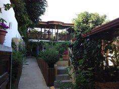 Weg zu den Zimmern - Hotel Posada Nena, Casa Alegre