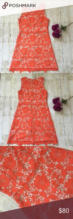 "orange floral overlay dress. nwot New without tags. Never worn. New condition. Gorgeous dress, orange floral overlay with tan/nude layer under. 100% polyester. Gold exposed zipper on back. Measurements lying flat: armpit to armpit 18 inches. Waist 16 inches and length 36 inches.  ❌ No trades or off Poshmark transactions.   Quick shipping.   Offers welcome through ""Make an Offer"" feature.    Bundle discount.   ❔ Feel free to ask any questions. ECI Dresses"