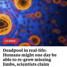 Deadpool in real-life: Humans might one day be able to re-grow missing limbs scientists claim http://ift.tt/2EgdUr7  #news #fashion #love #moda #music #art #follow #style #instagood #instagram #world #2017 #shopping #beauty #insta #photooftheday #fun #like #lifestyle #funny #cute #summer #beautiful #новости #modafeminina #picoftheday #tbt #lookdodia #girl #memes