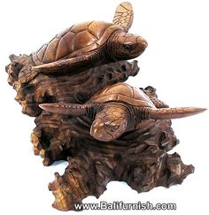 carving turtles-Balinese Carvings Wood Turtle Bali