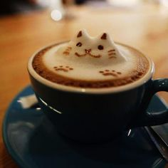 KitTea in San Francisco: the perfect place to enjoy a cup of tes / coffee and played with cats l #catcafe