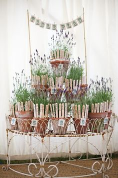 botanic seating plan ideas