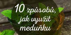Meduňka je opravdu skvělou bylinkou! A o její mnohá využití byste rozhodně neměli přijít! Edible Flowers, Health Advice, Herb Garden, Drink Sleeves, Food Inspiration, A Table, Health And Beauty, Life Is Good, Herbalism
