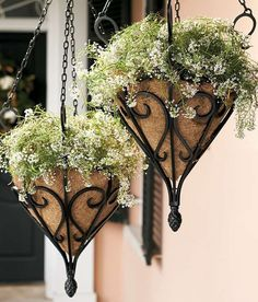 Inspired by an antique design, our Antique Hanging Planter features graceful scrollwork and a wrought-iron look that accentuates your chosen arrangement. Outdoor Planters, Garden Planters, Outdoor Gardens, Metal Hanging Planters, Wall Planters, Concrete Planters, Balcony Garden, Container Plants, Container Gardening