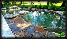 Pond with flagstone patio sitting area installed by Full Service Aquatics #fullserviceaquatics #ponds #watergarden
