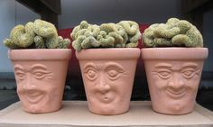 "Deborah Miuccio, our product testing coordinator, created this arrangement with one of our new products, the Face Pots ($14.95 for a set of three).  ""I call it 'The Brains of the Operation',"" she says. http://bit.ly/HeKQtB"